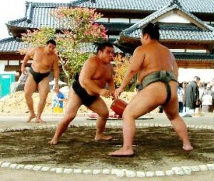高田川部屋力士たち